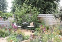 Living Landscapes Landscaping Projects / Landscaping and garden design projects carried out by Living Landscapes.