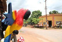 Paraguay / Bilder, Geschichten und Tipps aus Paraguay