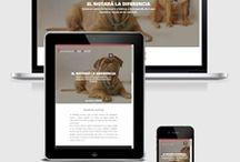 Últimos diseños web / Diseño web