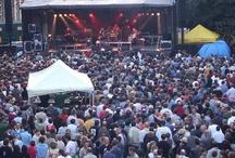 Empty Meds Concerts