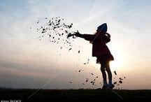 Autumn / by Alamy