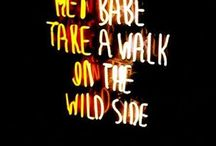 Walk on the wild side / Concept