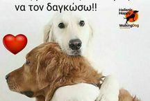 Σκύλοι / Σκύλοι