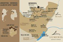 lujan de cujo wine map