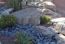 Outdoor gardens & ideas