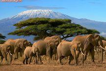 Luoghi da visitare nel mondo / I posti più belli del nostro pianeta - All the photos http://bit.ly/wuvBu2
