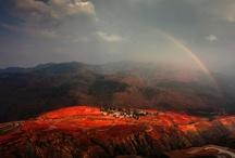 Beautiful World / by Barry Rashford