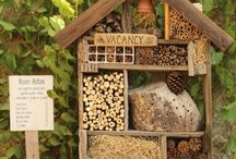 bug hotel project