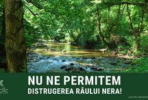 Save Romania