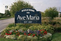 Ave Maria / Ave Maria is the newest community in Collier County. Conveniently located east of Interstate 75, the community is home to Ave Maria University, a parochial school, a town center with a variety of dining opportunities, convenient shopping, a water park, a golf course, and other recreational facilities.