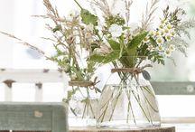 Bloemen/planten binnen
