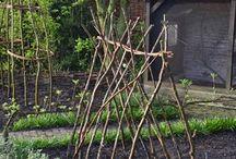 Garten ♥ / Gemüse anbauen, Hochbeet, Selbermachen, DIY, Gartengestaltung, Beete, Anzucht, Gewächshaus