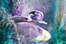 christinefoto.com / Macro photographs of artistic water droplets.