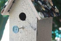 bird bat boxes