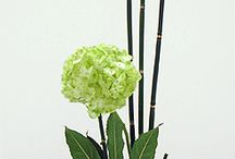 Ikibana floral art