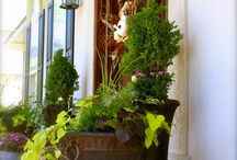 Outdoor planters / by Jessica Alba
