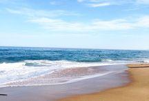 Summer Lovin' Beach