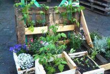 Gartenprojekt H