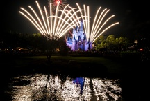 Disney <3 / by Dawn Pilon
