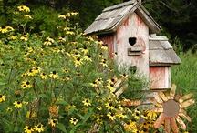 Nistkästen! Vögel | Lars Schönberg / Kein Garten ohne Nistkasten! Und am besten gleich zwei oder drei. Vögel brauchen Platz zum Brüten. Und Gärten voller Vielfalt.