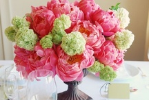 In the Middle: Centerpieces  / by Crystal Dunn from My Ramblings