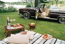 picnic y fiestas en jardin