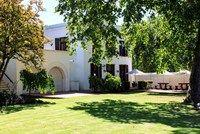 Farm Life / Everyday life on the beautiful Zandvliet Wine Estate and Thoroughbred Stud.