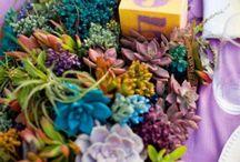 Lebensmittelfarbe im Garten