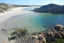 Westküste Australien Erlebnisreise / australia westcoast nature - Die meisten Besucher zieht es an die Ostküste von Australien. Hier findest du Argumente, weshalb die Westküste vielleicht das richtige Abenteuer für dich ist.