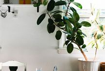 dwell / how to create the feel of earthy, garden life whilst dwelling in an apartment. / by Arrow Rene'