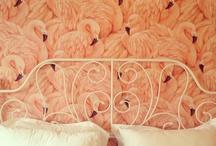 Pink Flamenca