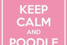 poodle stuff
