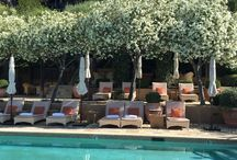Wine Country Style / Favorite elements of wine country