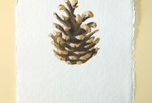 Pinecones, seedheads and plants - my nature study watercolours / Watercolour nature studies of seedheads, pine cones and the like.