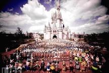 Walt Disney / by Guru Donna Kay