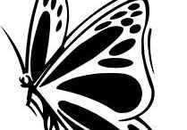 siluety motýli