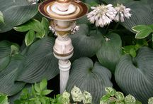 Gardening and Yard Decor / by Janet Young Lei