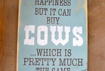cows are my favorite thing
