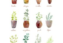 WaterColor ideas to try