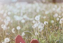 (WEEK-END AU GRAND AIR) - En Mai, fais ce qu'il te plait ! / En ces beaux jours printaniers : le soleil brille, les boutons de fleurs éclosent, les week-ends sont prolongés.. Le joli mois de mai est là ! La Gamme Nature s'invite donc dans vos escapades en plein air. Découvrez ces solutions naturelles pour petits et grands.