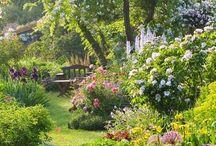 Jardin/garden