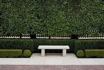 Garden Ideas / by Jane Pelham