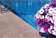 Pool & Amenities