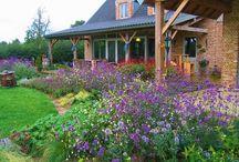 General gardens / All other garden ideas