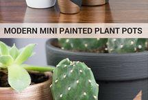 interior plant pots
