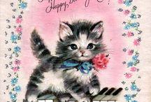 kitten verjaardag