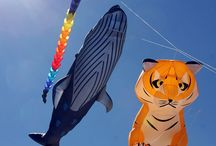 Kite flying around the world / Colorate immagini di #aquiloni da tutto il #mondo!  #Colored pictures of #kites from #around the #world.  #festival #aquiloni, #kite #Drachenfest