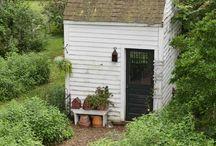 Garden Thyme / by Debbie Showalter