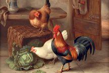 Картинки. Pictures. Петухи и птичий двор.
