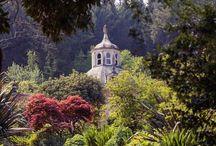 Orangery Retreat Estate